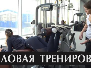Embedded thumbnail for Силовая тренировка для начинающих